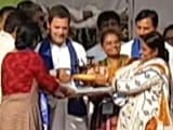 Video : मेरा परिवार शिव भक्त है: राहुल गांधी