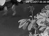 Video : नेशनल रिपोर्टर : कमला मिल्स कंपाउंड हादसे की CCTV फुटेज आई सामने
