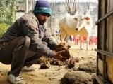Video : जैविक खाद बनाने का चमत्कारी फॉर्मूला, किसानों के लिए वरदान