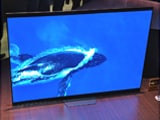 Video : Sony Bravia A8F 4K HDR TV First Look: Android TV With Google Assistant And Alexa