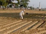 Video : Agriculture Credit Target For Financial Year '19 Up 10 Per Cent To Rs. 11 Lakh Crore