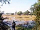 Video : केवला देव बर्ड सेंचुरी का बुरा हाल, घोसला छोड़कर चले गए पक्षी