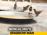 Video : World Sparrow Day: How Bengaluru's 'Sparrow Man' Is Saving House Sparrows From Extinction