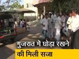 Videos : घोड़ा रखने की वजह से गांव के दबंगों ने की दलित युवक की हत्या