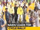 Video : Chandrababu Naidu Hops On Bicycle To Demand Special Status For Andhra Pradesh