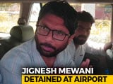 Video : Jignesh Mevani Stopped At Jaipur Airport, Not Allowed To Hold Rally