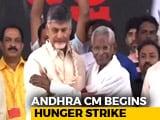 Video : Chandrababu Naidu Fasts On Birthday To Press Special Status Demand