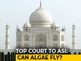 "Video : ""Can Algae Fly?"" Asks Supreme Court, Upset Over Taj Mahal Changing Colour"