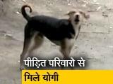 Video : यूपी के सीतापुर में आदमखोर कुत्तों के 2 और शिकार